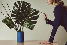 Dramatic, deeply lobed leaves such as those of the monstera plant (also known as a split-leaf philodendron) can be the star of a contemporary ikebana arrangement. The large, flat leaves are simple to shape and gain stability when surrounded by horsetail stems in a cylindrical vase by Victoria Morris.