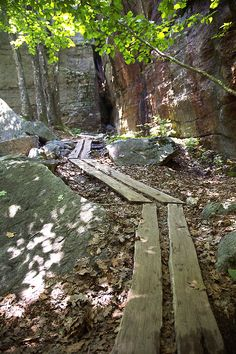 Wooden Path; Sam's Point Preserve, Cragsmoor, NY