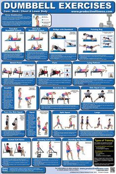 Follow the poster's illustrations and descriptions for variations on crunches, lunges, squats and calf raises. Round out your routine with the bench press, deadlift, flyes, standing hip flexor, lying pullover, bent-over row, the bridge with dumbbell and the pointing dog. Dumbbells are the ultimate tool to develop your core strength and coordination.