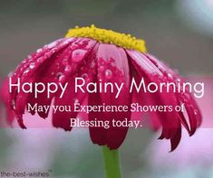 Romantic Good Morning Love Quotes For Her [ Best Collection ] Morning Rain Quotes, Rainy Day Quotes, Love Good Morning Quotes, Good Morning Inspiration, Good Morning Messages, Good Morning Rainy Day, Good Morning Gift, Good Morning Picture, Rainy Days