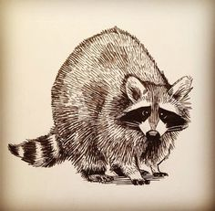 Image result for geometric raccoon