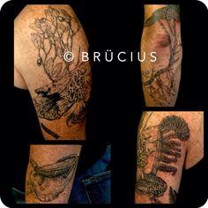 #BRUCIUS #TATTOO #SF #engraving #etching #stippling #salamander #mushroom #branch #ginger #flower #scientific #fauna #in progress #sleeve #blackink #fern #huckleberries #millipede