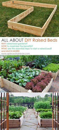 kitchen garden All About Raised Beds: Ultimate guide on how to build the most productive raised bed gardens! Lots of tips and resources! - A Piece Of Rainbow Veg Garden, Garden Boxes, Garden Soil, Vegetable Gardening, Vegetable Boxes, Raised Vegetable Gardens, Diy Garden Bed, Potager Garden, Veggie Gardens