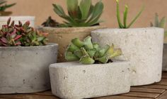 Make your own cement planters.