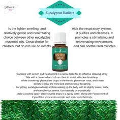 This weeks highlighted oil is Eucalyptus Radiata. When you hear eucalyptus you… #cantbreathe #stuffynose #coughing #plantsheal #newmom