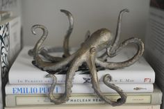 Book shelf octopus- @Kiele Gregoire I so think you need this!! :) You too @Jessica Zadlo!