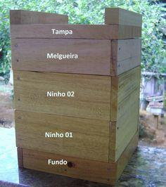 Meliponário Monte Seco: Caixa Racional Para Abelhas Jataí