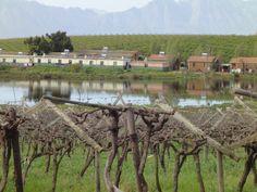 Riebeeck Kasteel. South Africa