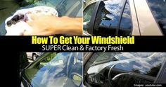 Over time and with many miles, the windshield on any car will become dirty and blurry; using these techniques can solve all those problems. Car Cleaning Hacks, Diy Cleaning Products, Cleaning Solutions, Car Hacks, Cleaning Supplies, Windshield Cleaner, How To Clean Windshield, Invisible Glass, Car Checklist