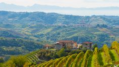About Piemonte Property - Real estate in Piedmont ITALY. Homes for sale in the Monferrato, Langhe and Roero (Asti, Alba, Barolo, etc)