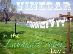 How to use vinegar with the laundry