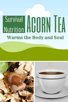 Acorn Tea, Warms the body and soul and gives you energy.