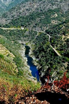 Jaw-stopping splendour of the Douro Valley