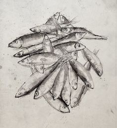 Pen and Ink - Sprats
