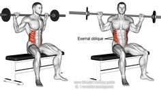 Seated barbell twist exercise