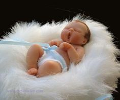 amazing pictures of babies | Amazing Miniature Babies by Camille Allen uploaded to CureZone by ...