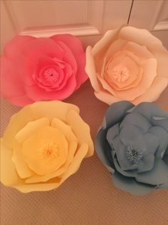 Paper Flowers, Rose, Plants, Pink, Roses, Flora, Plant, Planting, Pink Roses