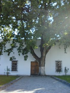 ©CGza Parras de la Fuente, Coahuila - My father's birthplace