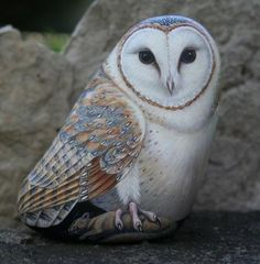 barn owl painted on a rock
