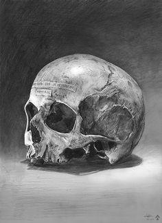 50 créations digitales autour du skull | Webdesigner Trends - Webdesign et inspiration