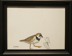 """H. Veng Smith, Plover, 2012, Water Color on Paper, 9""""x7"""".....SOLD  i just bought this art.  jealous?"""
