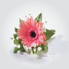 Gerber Daisy Corsage/Boutonnieres! TOPS Floral specialists will work with you (and your budget) to create the perfect arrangement for your special day.