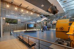 Museu da Baleia. Caniçal. Madeira