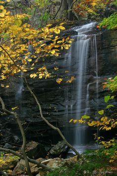 Dolan Branch Falls in Bays Mountain Park, Kingsport, TN.