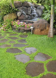 Garden Stepping Stones to the pool