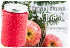 Gold Canyon scented candles, jar candles, wickless and flameless scents, candle holders and more. See our specials! Gold Canyon Candles, Spice Set, Hurricane Lamps, Best Seasons, Best Candles, Fragrance Oil, Bottle, Floral, Carnation