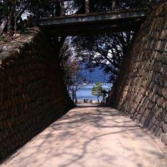 """おはようございます 昨日の夜は雷が鳴ってました(>_<"""") その後の大雨に気付かず寝てた粟村です(ω) 写真は先週渡った仙酔島での一枚 海水浴場(田ノ浦)から渡船場方向を見てます 道の向こうに海が見えてこれから夏がくるよーって感じで好きな風景です(3)b では皆さま素敵な日曜日を #鞆の浦 #鞆 #仙酔島 #鞆の浦路地シリーズ #夏の扉 #tomonoura #tomo by amochinmi_awamura"""