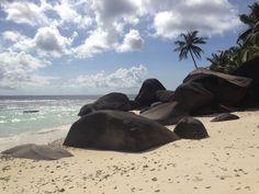 Labriz Silhouette, Seychelles in Silhouette