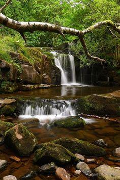 Welsh Waterfalls: Tal-y-bont by Abigail Carpenter
