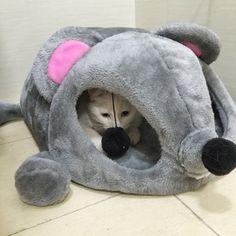 Hoopet 회색 마우스 모양 침대 작은 개 고양이 동굴 침대 이동식 쿠션, 방수 바닥 애완 동물 집 선물 애완 동물 # k