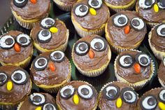 Owl cupcakes made for Jessica's baby shower