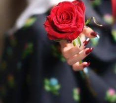 Holding Flowers, Love Flowers, Girly Pictures, Beautiful Pictures, Hand Pictures, Flower Girl Photos, Rose Images, Girls Hand, Cute Girl Pic