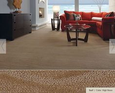Shaw has many carpets with a design that fit in many styles of rooms.