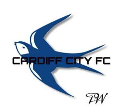 Cardiff City Football, Cardiff City Fc, Welsh Football, British Football, Bristol Rovers, Bluebirds, Premier League, How To Memorize Things, Memories