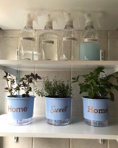 Como organizar a casa: 80 dicas para manter a casa sempre arrumada Personal Organizer, Planter Pots, Sweet Home, Organization, Diy, Design, Home Decor, Ideas Para, Miami