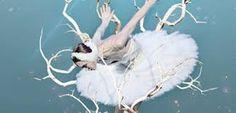"""Résultat de recherche d'images pour """"le lac des cygnes"""""""