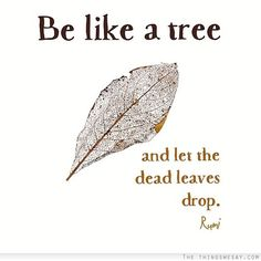 Be like a tree and let the dead leaves drop …