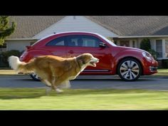 VW's Sequel to 'The Force' Super Bowl Ad Features Dog, Vader