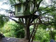 Check out this awesome listing on Airbnb: Treehouse Above San Francisco Bay! - Treehouses for Rent in Burlingame