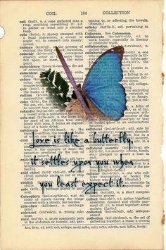 Love is like a butterfly, it settles upon you when you least expect it.