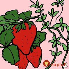 jahody.jpg (600×600)