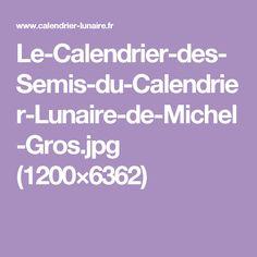 Le-Calendrier-des-Semis-du-Calendrier-Lunaire-de-Michel-Gros.jpg (1200×6362)
