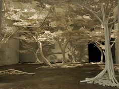 Cherry Tree Installation - by Tom Price | Frameweb
