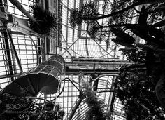 Palmenhaus by ViennaCalling check out more here https://cleaningexec.com