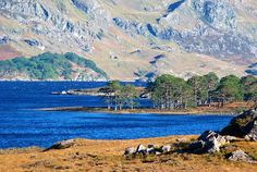 Loch Maree (Scottish Gaelic: Loch Ma-ruibhe) is a loch in Wester Ross in the Northwest Highlands of Scotland.