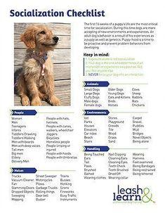 Puppy Socialization Checklist by Leash and Learn #DogSupplies #puppytrainingcratetips #PuppyCrates